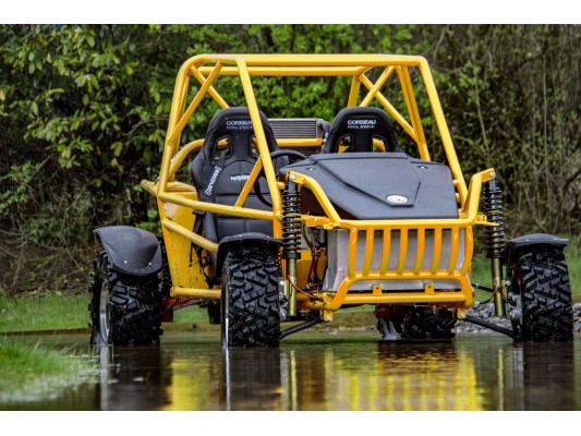 Tristan FORD BEAST Buggy