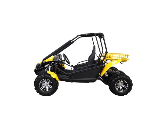 Budget GY6 Kids 150cc Buggy