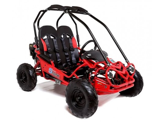 Mud Rocks GT50 Buggy (5.5hp)