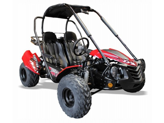Cheetah 150cc Buggy (8.9hp)(12 - Adult)