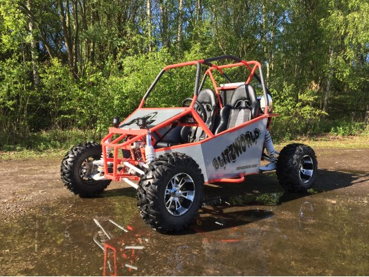 Renegade DX10 (Auto) buggy 300cc X-demo