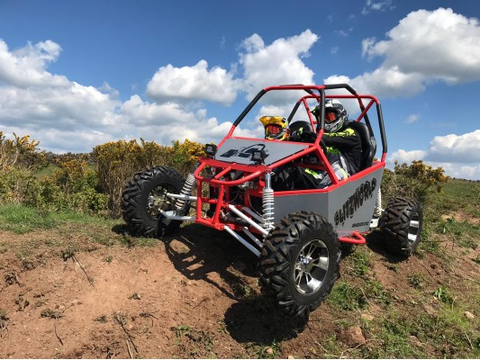 Renegade DX10 buggy 300cc Auto
