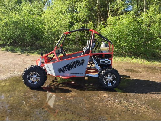 Renegade DX10-C Corporate use buggy 300cc Auto