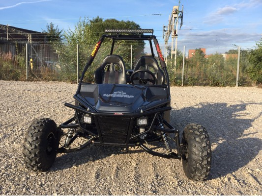 Ripster 200cc Buggy (USA spec) MK2