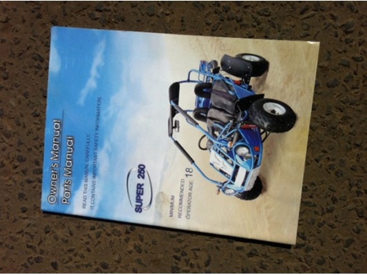 250cc buggy manual Download Hammerhead Sharks on