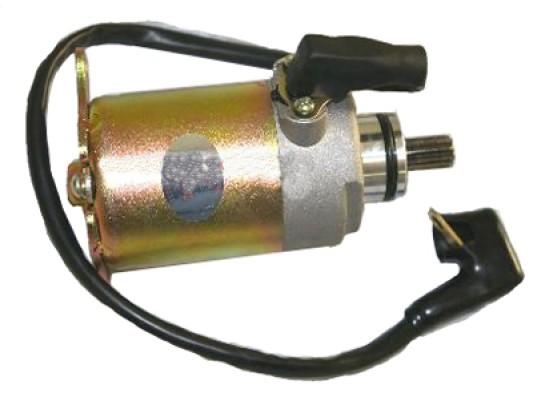 Ripster 200cc Starter Motor