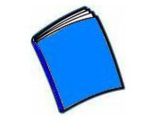 Blitz 1 Manual