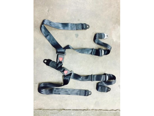Quadzilla MID Bug Seatbelt standard